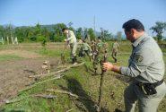 رفع تصرف ۲۵۰۰ متر مربع از اراضی منطقه حفاظت شده لیسار در تالش